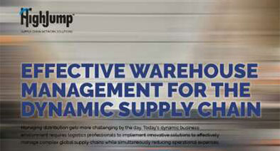 Warehouse Management System Wms Software Solutions